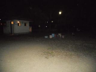 ウォーキング 夜 公園.jpg